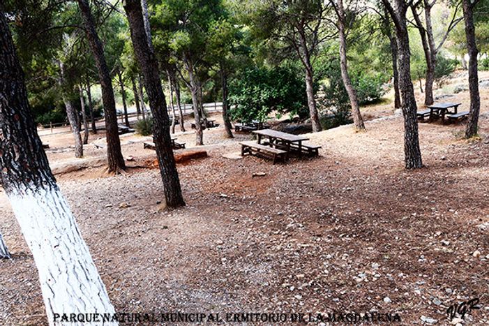 Parque-natural-7-WEB.jpg