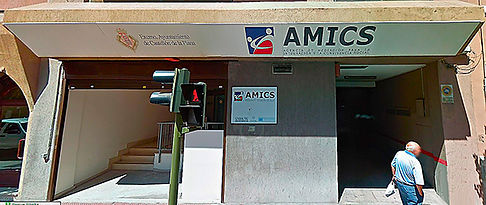 Ayuntamiento-AMICS-WEB.jpg