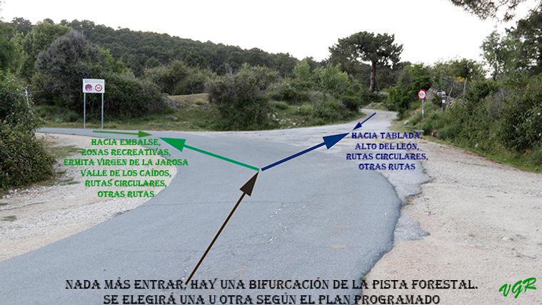 Bifurcacion camino-1-WEB.jpg