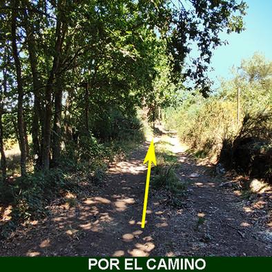 3-Por el Camino-WEB.jpg