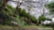Parque Loureiros-WEB.jpg