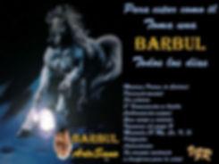 Barbul-2.jpg