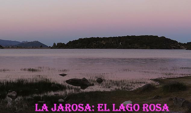 Lago rosa-2-WEB.jpg