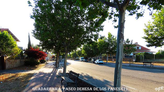 Paseo Dehesa de los Panes-1-WEB.jpg