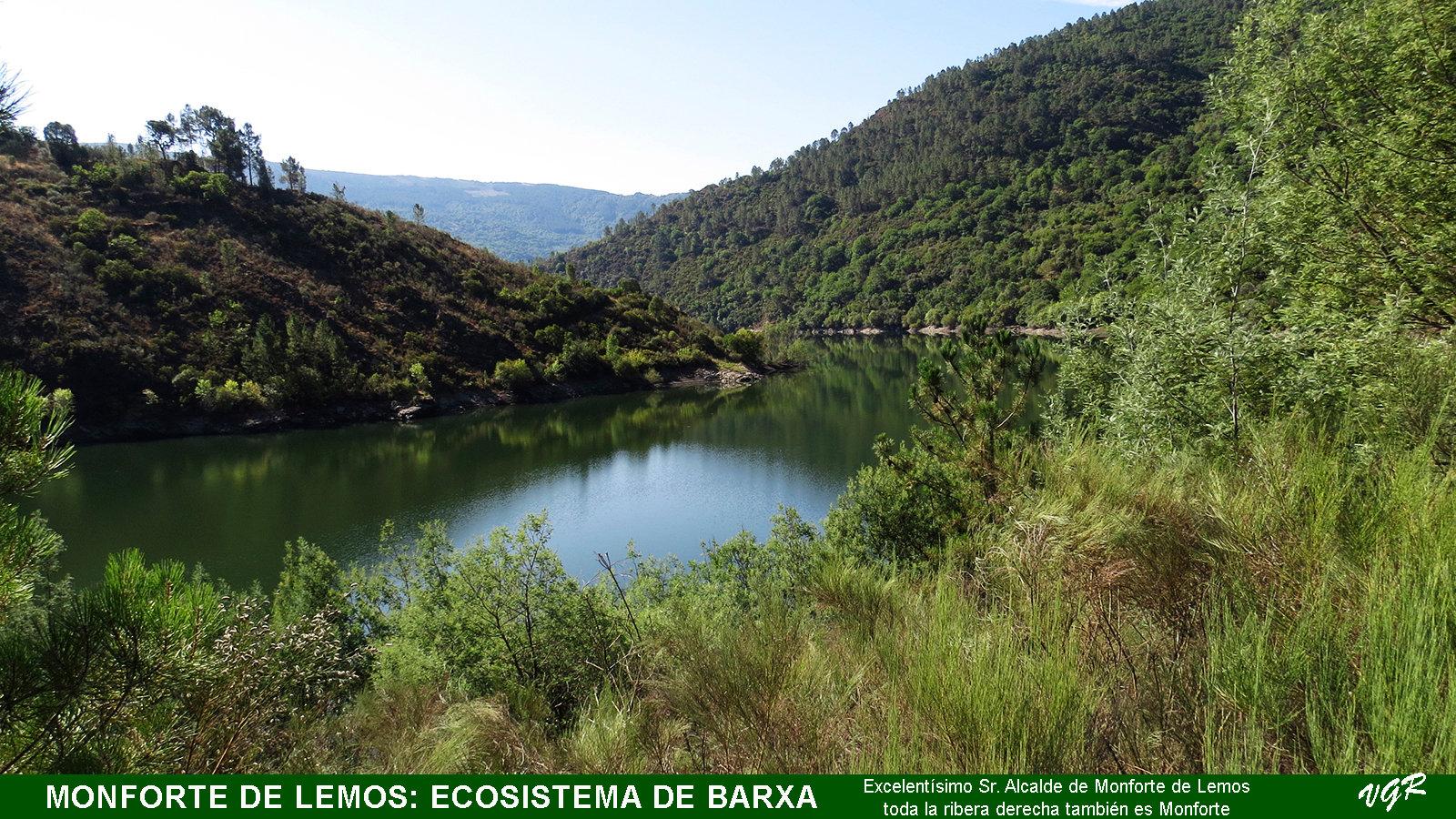 Barxa1-Ecosistema de Barxa-WEB.jpg