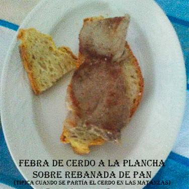 Febra de cerdo-WEB.jpg