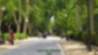 Paseo-Obelisco-2-WEB.jpg