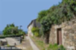 Burgo Medieval-1.jpg