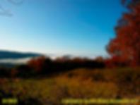 Rubin-niebla.jpg