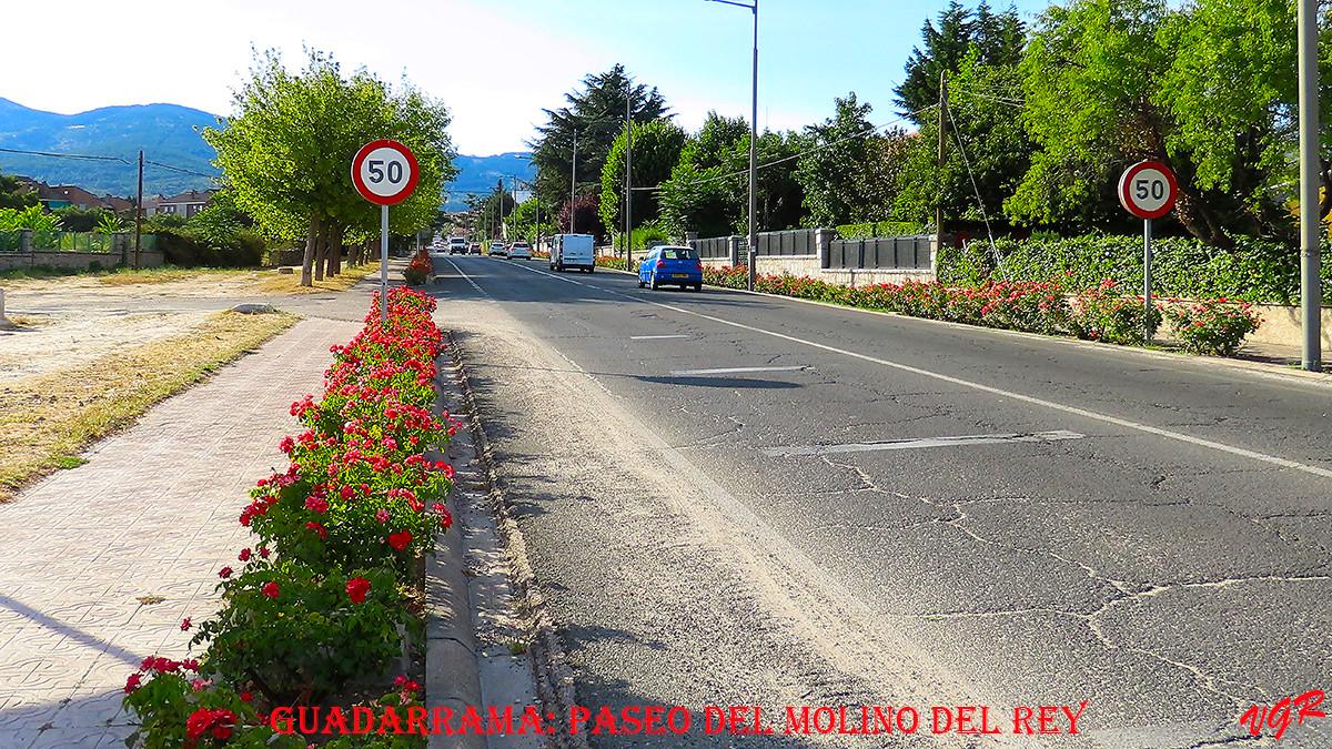 Paseo del Molino del Rey-WEB.jpg
