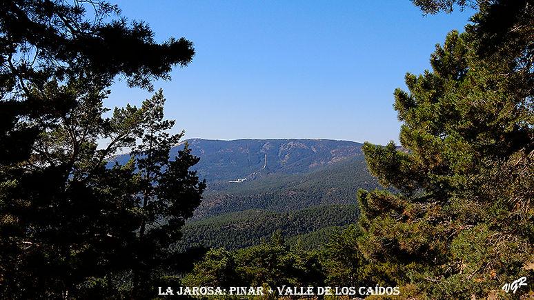 Vista General Pinar y Valle de los Caido