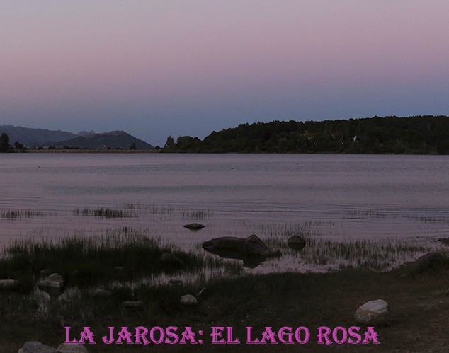 Lago Rosa-5-WEB.jpg
