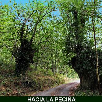 10-Hacia La Peciña-3-web.jpg