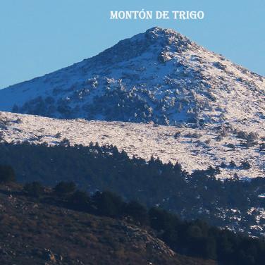Monton de Trigo-3-WEB.jpg