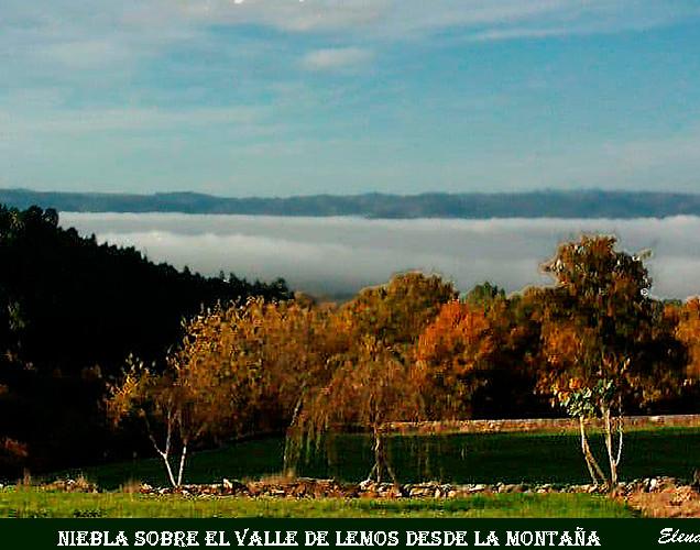 Niebla-Rubina-WEB.jpg