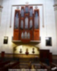 Organo-0-WEB.jpg