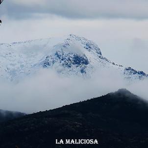 La Maliciosa-5-WEB.jpg