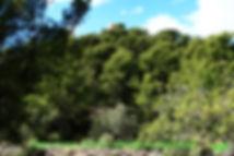 Parque-natural-6-WEB.jpg