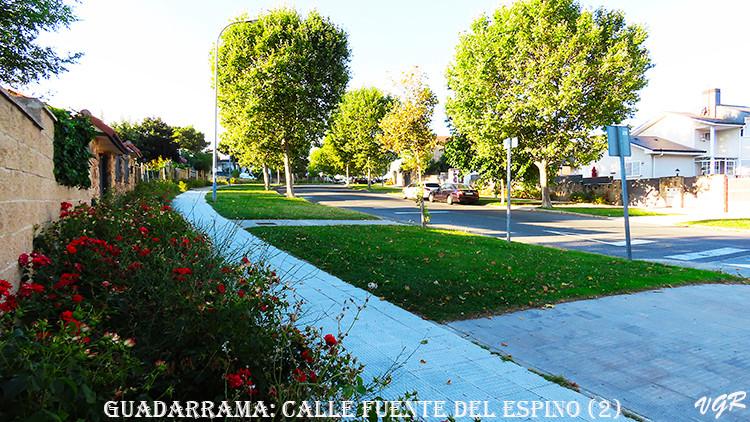 Calle Fuente del Espino-2-WEB.jpg