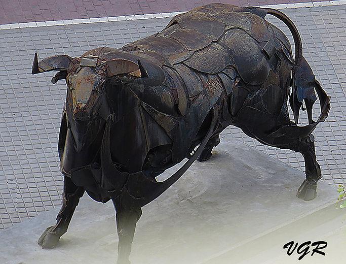 Toro-1-WEB.jpg