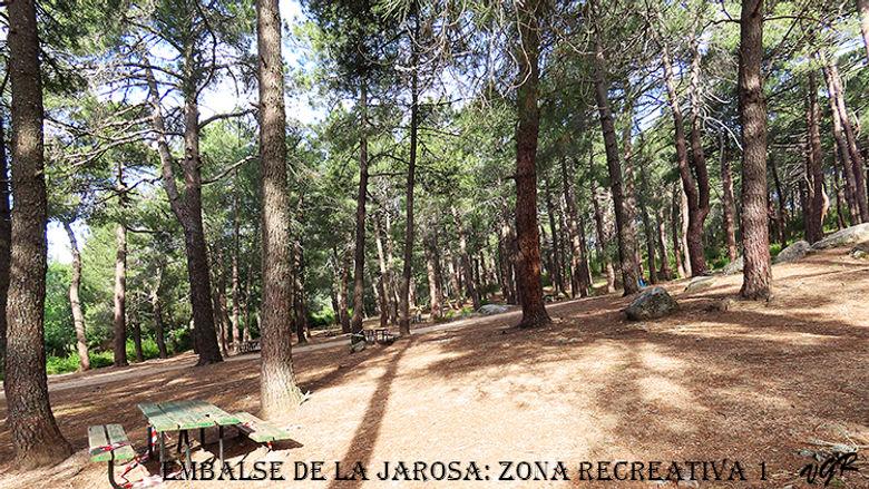 Zona1-Jarosa-1-WEB.jpg