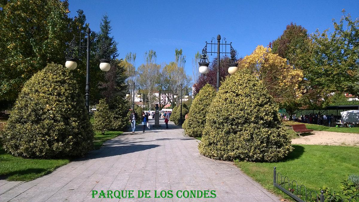 Parque de los Condes-web.jpg