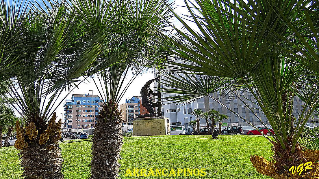 Arrancapinos-2-WEB.jpg