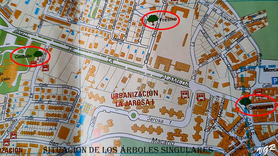 Plano situacion arboles singulares-WEB.j