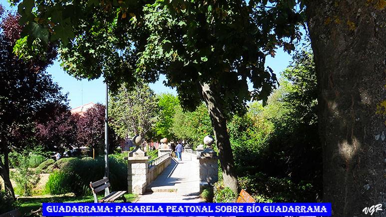 Pasarela Peatonal-1-WEB.jpg