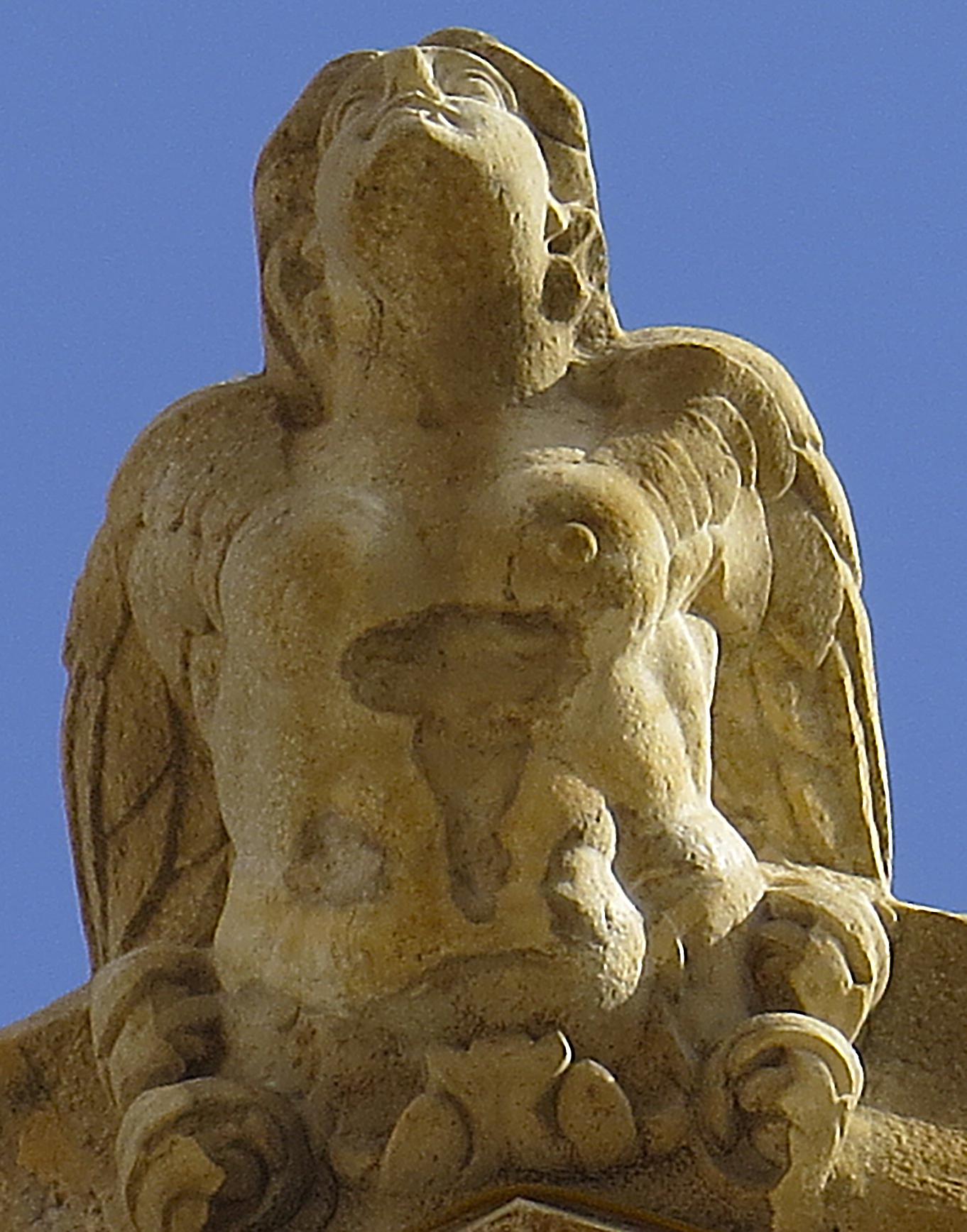 Gargola-1d