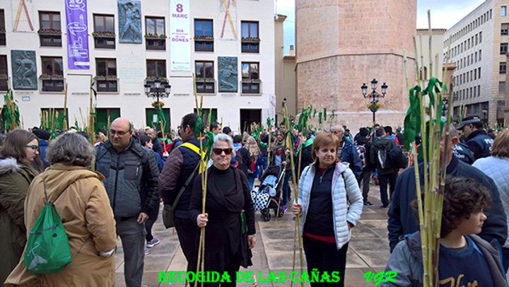Recogida_de_las_cañas-WEB.jpg