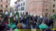 Desfile ayunt-Concatedral-1-WEB.jpg