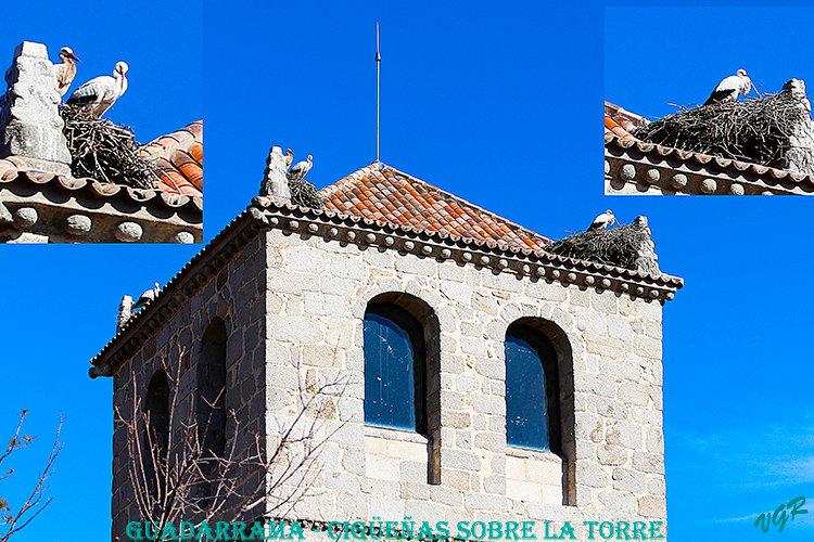 La Torre-Cigueñas-WEB.jpg