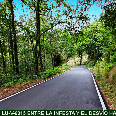 3-Carretera entre Infesta y desvio a Villamarin-WEB.jpg