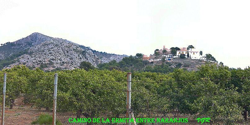Romeria-WEB-8.jpg