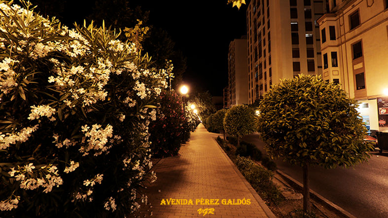 Avenida Perez Galdos-WEB.jpg