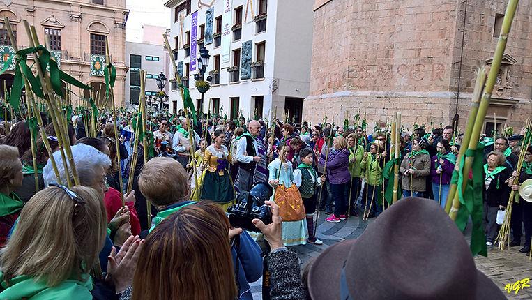 Desfile ayunt-Concatedral-6-WEB.jpg
