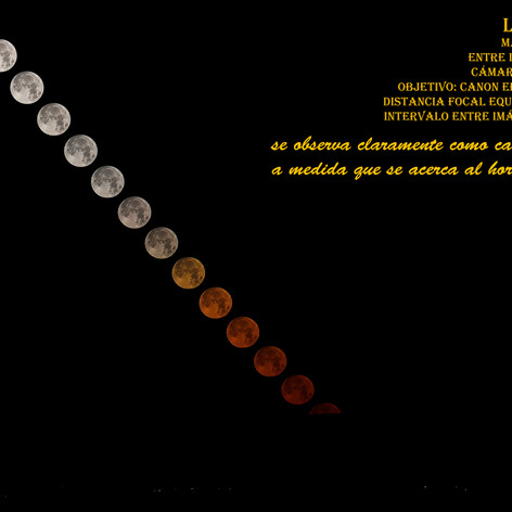 Luna-Trail-40.jpg