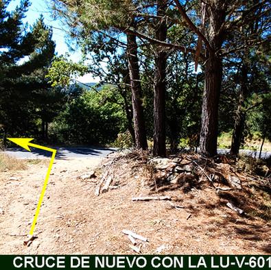 5-Nuevo Cruce carretera-WEB.jpg