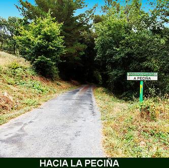 8-Hacia La Peciña-1-WEB.jpg