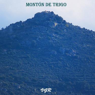 Monton de Trigo-4-WEB.jpg