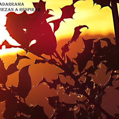 Amanecer-Guadarrama-plantas4-WEB.jpg