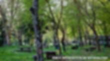 area recreativa de rivasaltas-WEB.jpg