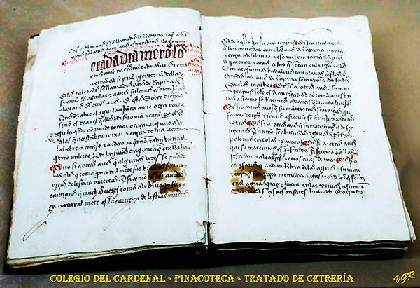Escolapios-Pinacoteca-Tratado_de_cetrerí