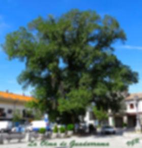 Guadarrama-La Olma-WEB.jpg