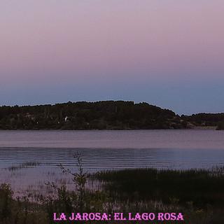 Lago Rosa-4-WEB.jpg