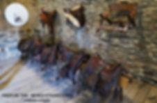 Pazo de Tor-Caballeria-1-WEB.jpg