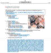 Declaración_de_BIC-WEB.jpg