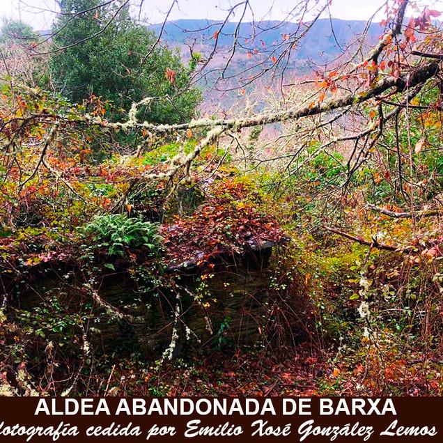 Barxa-4-WEB.jpg