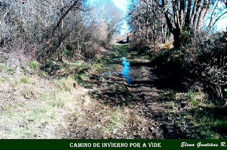 Camino de Invierno por A Vide-WEB.jpg